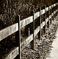 Country Fence Sepia by Kathleen Messmer