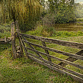 Country - Gate - Rural Simplicity  by Mike Savad