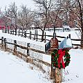 Country Holiday Cheer by Teri Virbickis
