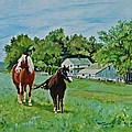 Country Horses by Jeannie Allerton