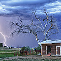 Country Horses Lightning Storm Ne Boulder County Co Hdr by James BO  Insogna