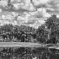 Country Lake 2 by Skip Nall