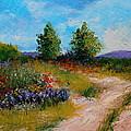 Country Lane by M Diane Bonaparte