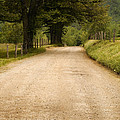 Country Lane - Smoky Mountains by Andrew Soundarajan