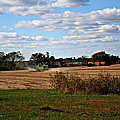 Country Life 2 by Eddie Miller
