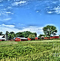 Country Life by Joe Russell