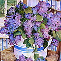 Country Lilacs by Sherri Crabtree