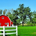 Country Living by Dan Sproul