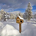 Country Mailbox by Buddy Mays