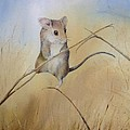 Country Mouse by Alison Harvey