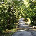 Country Road by Darrell Clakley