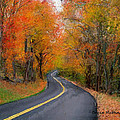 Country Road In Autumn by Bruce Nutting