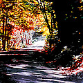 Country Road In Autumn by CHAZ Daugherty