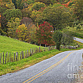 Country Road In The Fall by Jill Lang