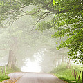Country Road In The Fog by Andrew Soundarajan