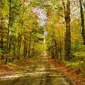 Country Road Take Me Home by Dan Sproul