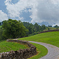Country Road With Limestone Fence by Kay Pickens