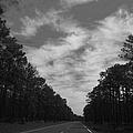 Country Roads by Debra Forand