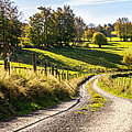 Country Roads by Pati Photography