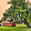 Country Scene by Kathleen Struckle