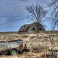 Country Scene by M Dale