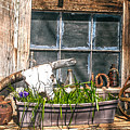 Country Still Life 2 by Sherri Meyer