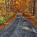 Country Super Highway by Lara Ellis