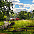 Country - The Pasture  by Mike Savad