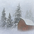 Country Winter by Angie Vogel