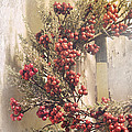 Country Wreath With Red Berries by Robin Lewis
