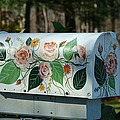Countryside Mailbox #14 by Robert DeFosses