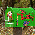 Countryside Mailbox #15 by Robert DeFosses