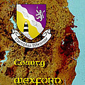 County Wexford by Val Byrne