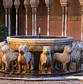 Court Of The Lions In The Alhambra by Guido Montanes Castillo