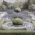 Courtyard Garden by Ariel Luke