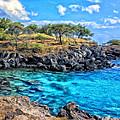 Cove At Mahukona by Dominic Piperata