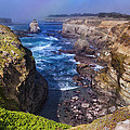 Cove On The Mendocino Coast by Kathleen Bishop