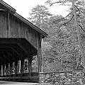 Covered Bridge Black And White by Kristen Mohr