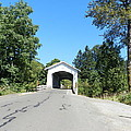 Covered Bridge by Candace  Boggs