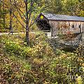 Covered Bridge by Claudia Kuhn
