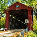 Covered Bridge In Fall by Terri Morris
