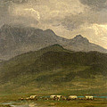 Covered Wagons by Albert Bierstadt