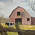 Cow And Barn by Norm Starks