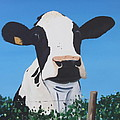 Cow On A Ditch by Tony Gunning