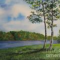 Cowan Lake by Alice Brunner