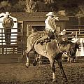 Cowboy 2 by Jordan Kaplan