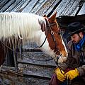 Cowboy Blues by Inge Johnsson
