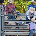 Cowboy Countdown by Gary Keesler