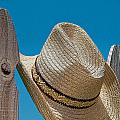 Cowboy Days by Charles Beeler