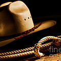 Cowboy Hat And Lasso by Olivier Le Queinec